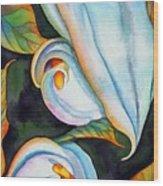 Soft Swirl Wood Print