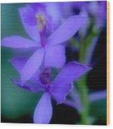 Soft Violet Wood Print