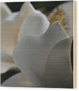Soft White Wood Print