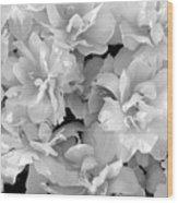 Soft Whites Wood Print