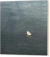 Softly Floating Plume Wood Print