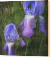 Softly Growing In The Garden Wood Print