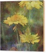 Softly Yellow 3052 Idp_2 Wood Print