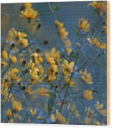 Softly Yellow And Blue Wood Print