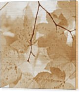 Softness Of Rusty Brown Leaves Wood Print