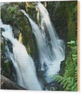 Sol Duc Falls Wood Print
