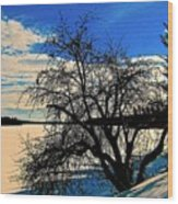 Solace On Silver Lake Wood Print