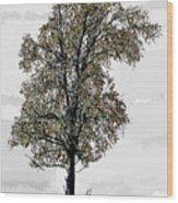 Solace Wood Print