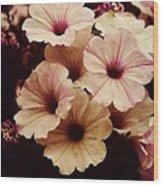 Solanaceae Wood Print