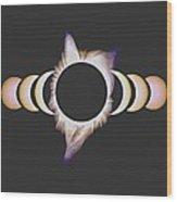 Solar Eclipse, 25 Wood Print