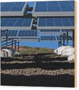 Solar Panels In Connecticut  Wood Print