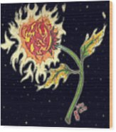 Solar Sun Flower Wood Print by Law Stinson