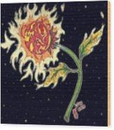 Solar Sun Flower Wood Print by Law Stinson