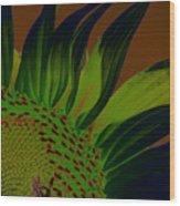 Solar Sunflower Wood Print