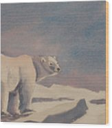 Solitary Polar Bear Wood Print