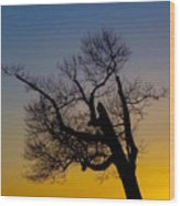 Solitary Tree At Sunset Wood Print