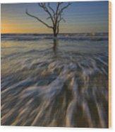 Solitude At Botany Bay Wood Print