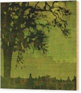 Solitude Wood Print by Bonnie Bruno