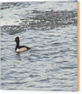 Solo Duck Wood Print