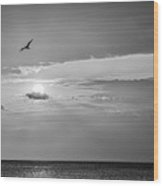 Solo Flight Bw Wood Print