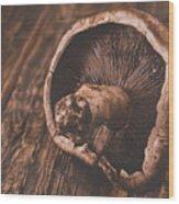 Solo Portabella Wood Print