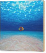 Solo Under The Sea Wood Print
