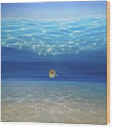 Solo Under The Turquoise Sea Wood Print