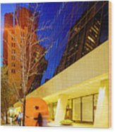 Solow Building Wood Print