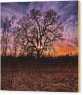 Somenos Oak Wood Print