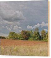 Somerset Sky 3069 Wood Print