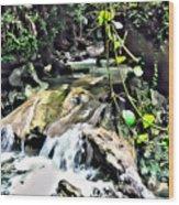 Somerset Stream Wood Print