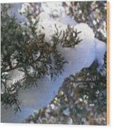 ''sometimes In Winter.....'' No.7, Tue--15jan2013 Wood Print