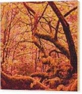 Somewhere Near Serenity Wood Print
