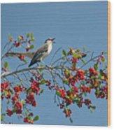 Song Of The Mockingbird Wood Print