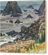Sonoma Coast Wood Print