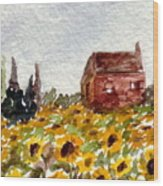Sonoma Hillside Series Sunflowers Wood Print