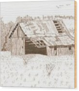 Sonora Barn Wood Print by Pat Price