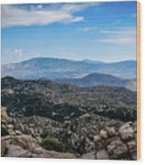 Sonoran Cliff Lookout Wood Print