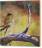 Sonoran Desert Dreamscape Wood Print