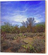 Sonoran Desert H1819 Wood Print