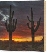 Sonoran Desert Sunrise 1 Wood Print