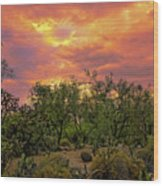 Sonoran Desert Sunset H44 Wood Print