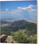 Sonoran Hillside Lookout Wood Print