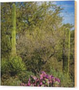 Sonoran Holiday Wood Print