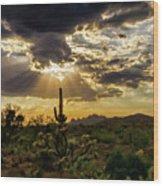 Sonoran Splendor  Wood Print