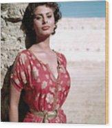 Sophia Loren, 1950s Wood Print by Everett
