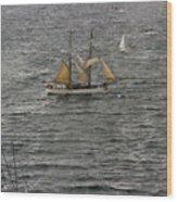Soren Larsen Tall Ship Enters Sydney Harbour Wood Print