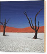 Sossusvlei In Namib Desert, Namibia Wood Print by Igor Bilic Photography