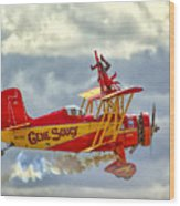 Soucy In Flight Wood Print
