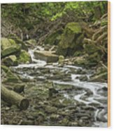 Sounds Of A Mountain Stream Wood Print
